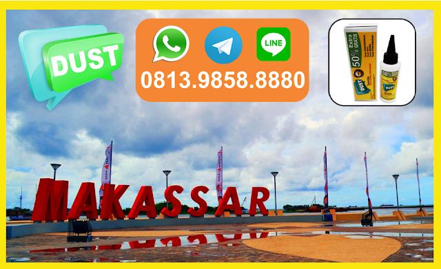 Obat Anti Rayap Makassar