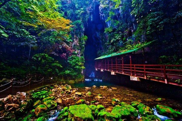 自然が作り出した、山口県一の絶景。秋芳洞とカルスト大地【Yamaguchi】 入り口