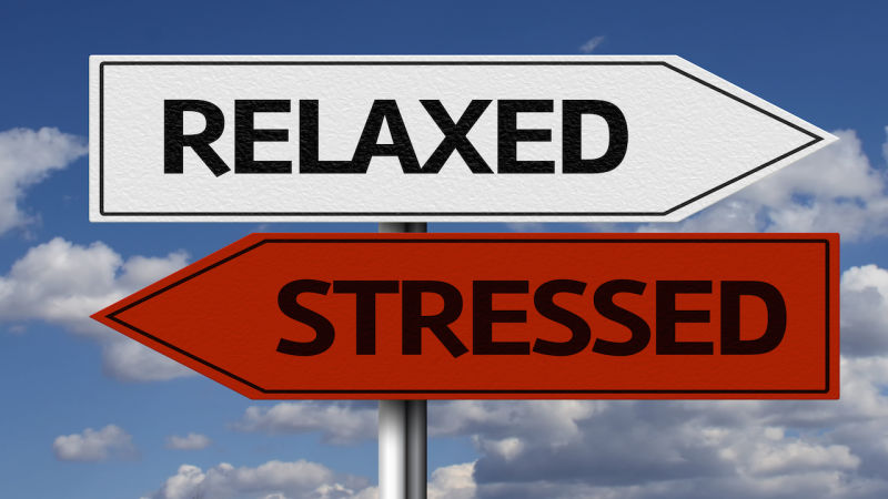 The Easiest Way To Reduce Stress