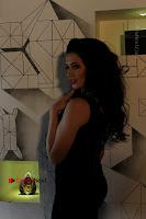 Hollywood Actress Madalina Bellariu Ion Poshoot Gallery For Film Dobaara .COM 0003.jpg