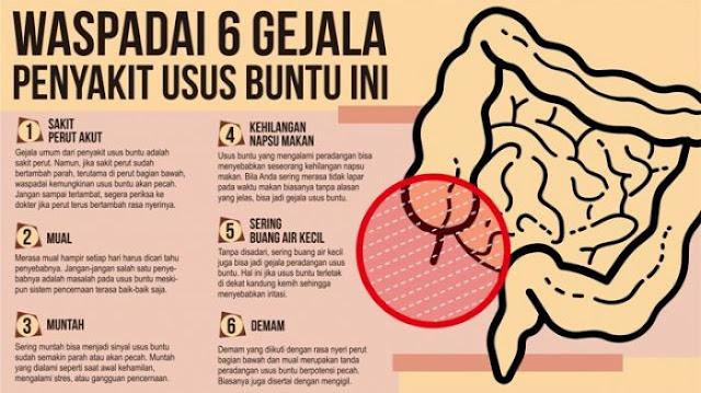 obat sakit perut alami