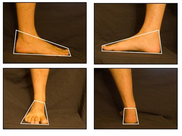 ayak nasıl çizilir