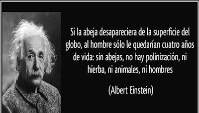 Albert Einstein dijo, que si desaparecieran de la tierra, al ser humano le quedarían 4 años de existencia