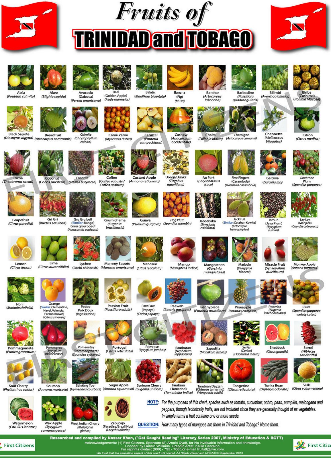 Trinidad And Tobago Food List
