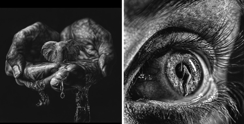 00-Jono-Dry-Eyes-and-other-Black-and-White-Graphite-Realistic-Drawings-www-designstack-co