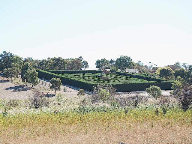 Review Barrabool Maze Estate