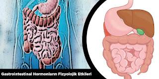 Gastrointestinal Hormonları