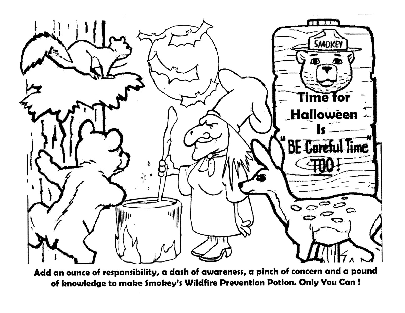 Virginia wildfire information and prevention october 2011 for Smokey the bear coloring pages