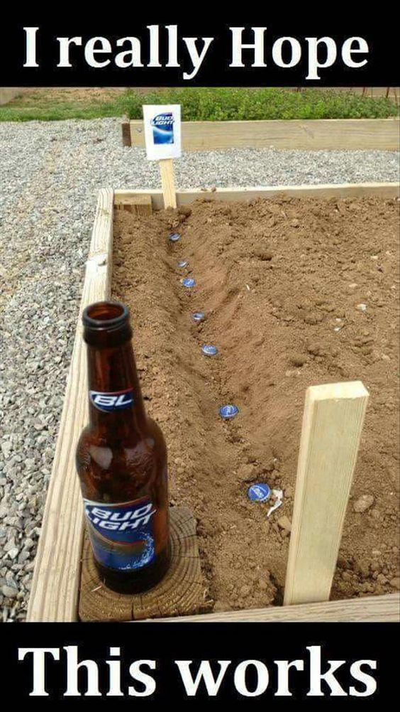 Beer Planting Funny Joke Pictures