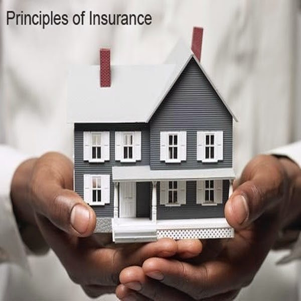 Home Insurance Quotes: House Insurance Quotes