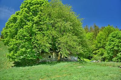 Chata pod Małą Czantorią