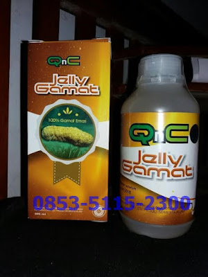 Khasiat Dan Manfaat Jelly Gamat QnC Asli
