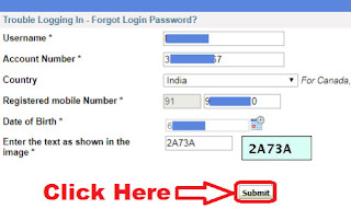 how to reset sbi internet banking login password without profile password