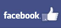 https://www.facebook.com/plugins/likebox.php?href=https%3A%2F%2Fwww.facebook.com%2Fpages%2FTurpis%2F404519609654575&width=292&height=290&colorscheme=light&show_faces=true&header=true&stream=false&show_border=true