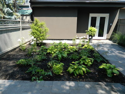the danforth new garden design after by garden muses--not another Toronto gardening blog