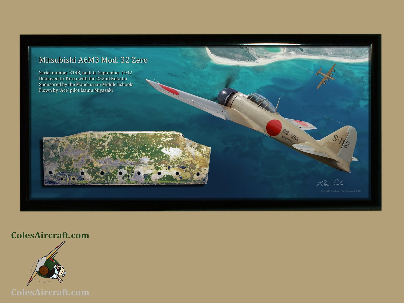 Aviation Art of Ron Cole & Cole's Aircraft: 2014