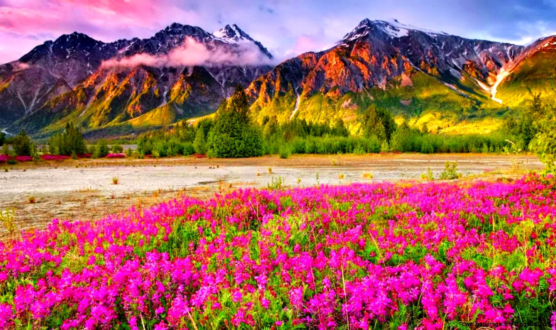desktop wallpaper new scenery - photo #30