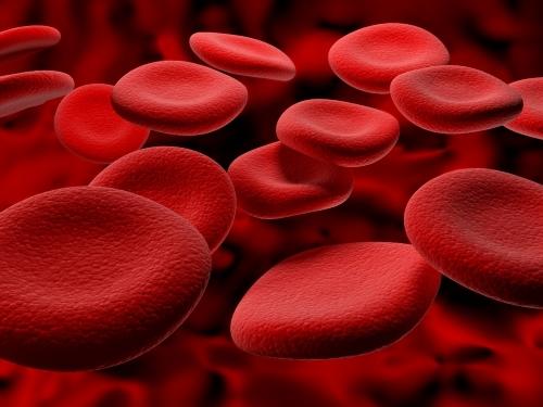 Tipo Sanguíneo e Ereção