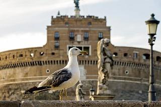 全世界株式のリターンとリスクを比較(ローマ)