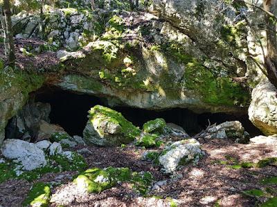 Cova de Muntanya.  -Foto: Pilar García  -GAME