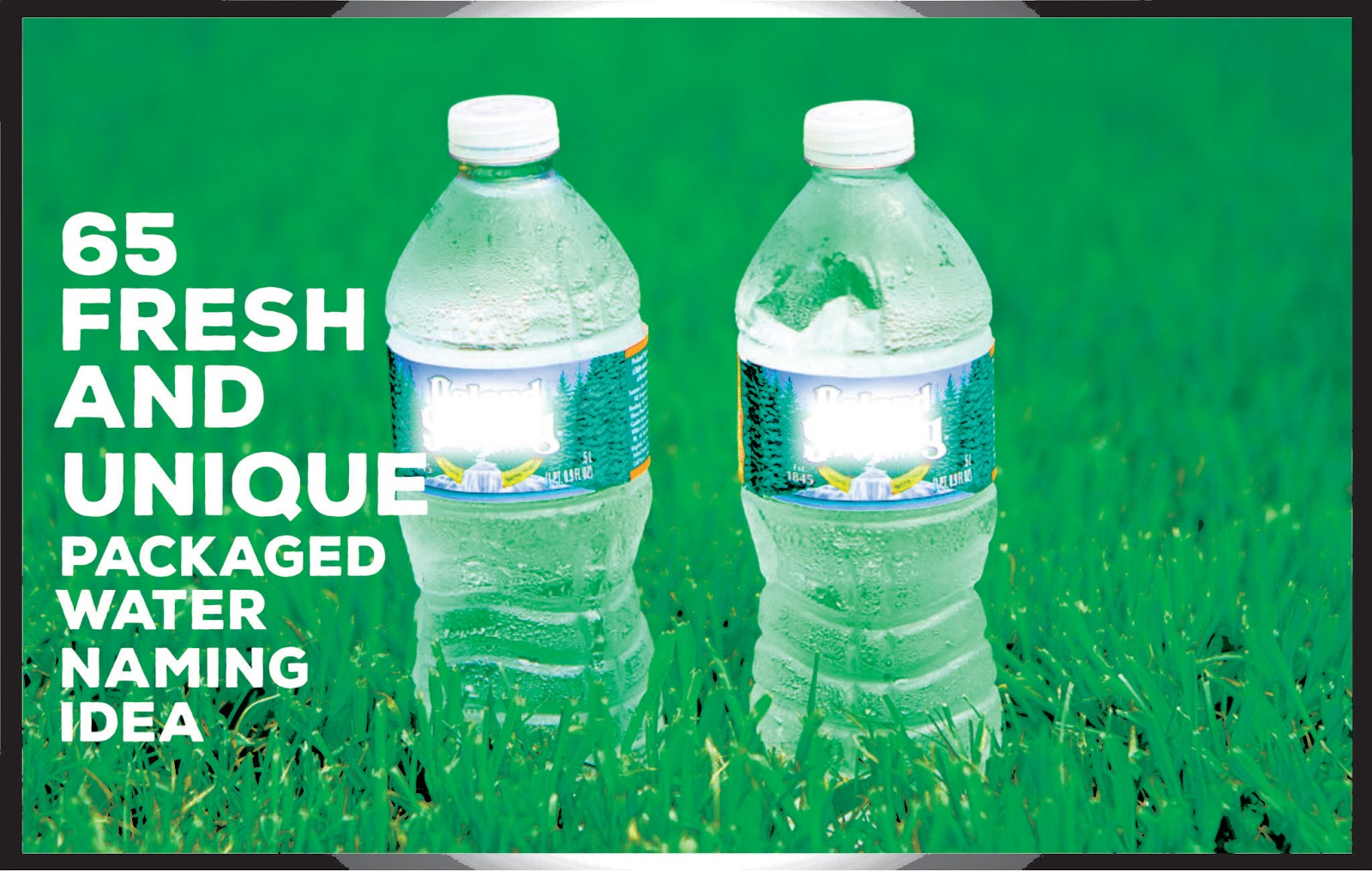 65 Good Packaged Bottled Water Company Names