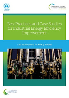 cover of Best Practices and Case Studies for Industrial Energy Efficiency Improvement