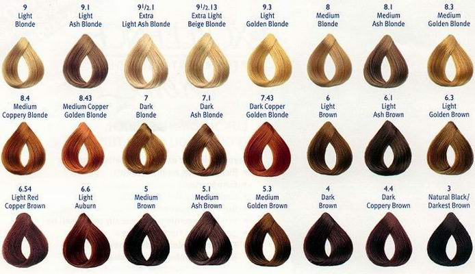 Red Hair Shades red hair color chart - hair color chart