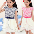 2015 New Children's Chines Style plum Flower dress l 2015 New Girl's Rainbow Dress baby Tu Tu Dress