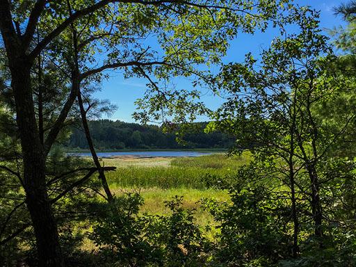 Ice Age Trail Bohn Lake Segment