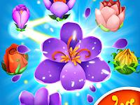 Game Blossom Blast Saga APK