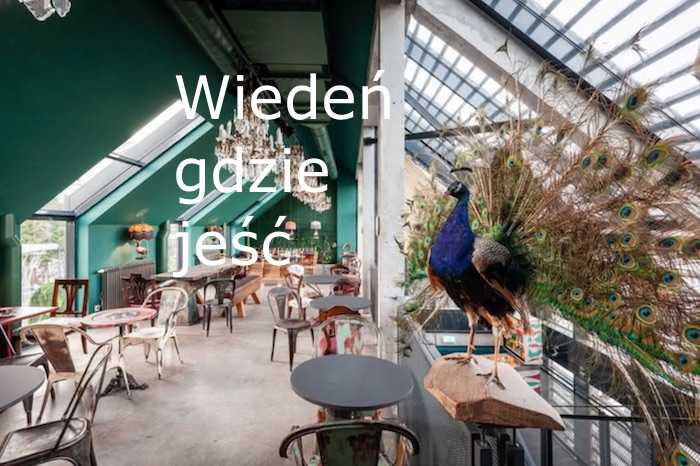 Wiedeń, Austria, Wiedeń gdzie jeść, Wiedeń co jeść, Wiedeń najlepsze restauracje, Austria co jeść,