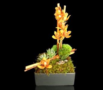 Ikebana: Boston Style