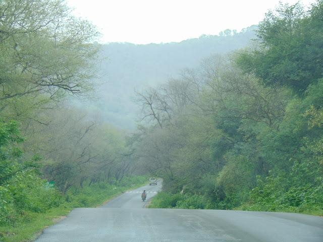 sariska road