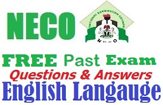 2017 NECO English Language Obj & Theory Questions/Answer Expo Runz