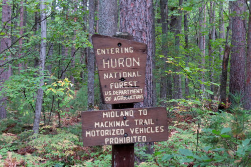 Huron National Forest sign