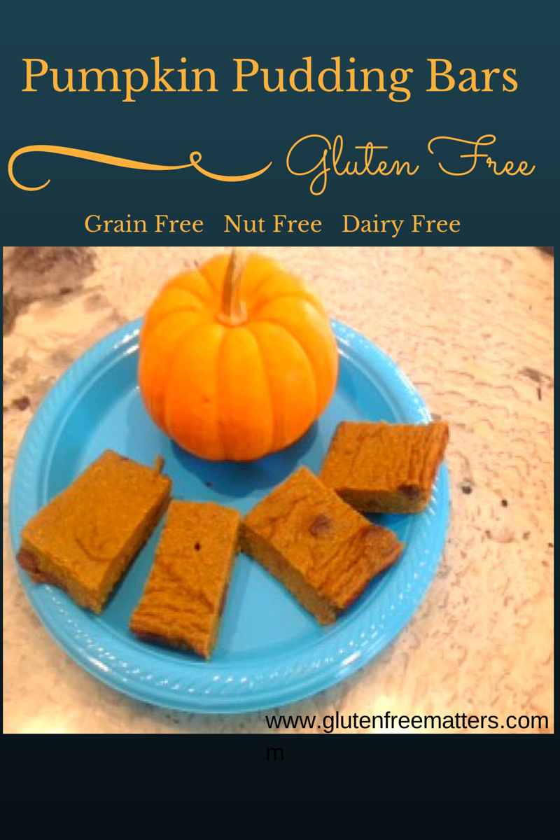 grian free pumpkin pudding bars