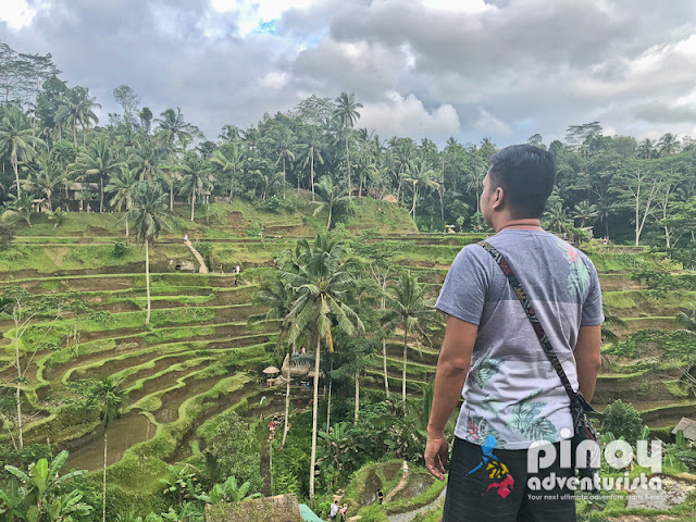 TOP BEST THINGS TO DO IN BALI INDONESIA