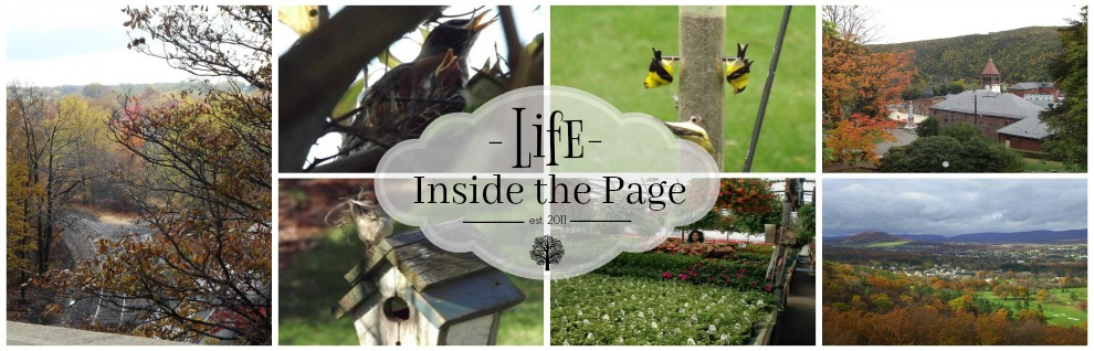 Life Inside the Page