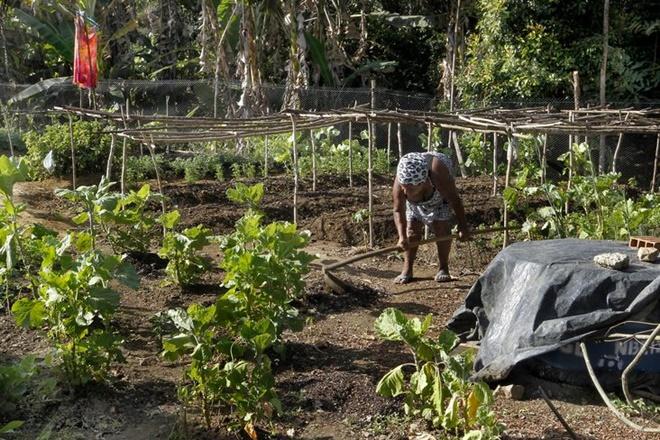 Garantia Safra destina mais R$130 milhões aos agricultores familiares baianos
