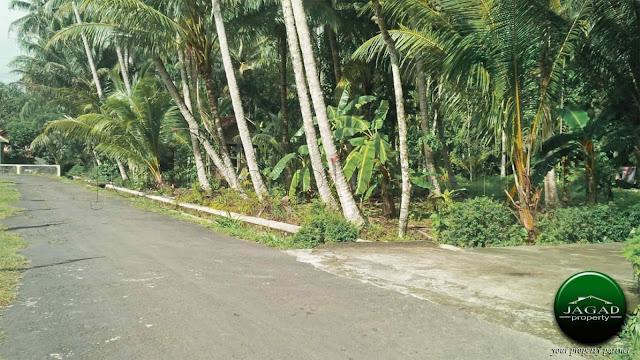 Tanah dekat Kelurahan Bojong, Panjatan