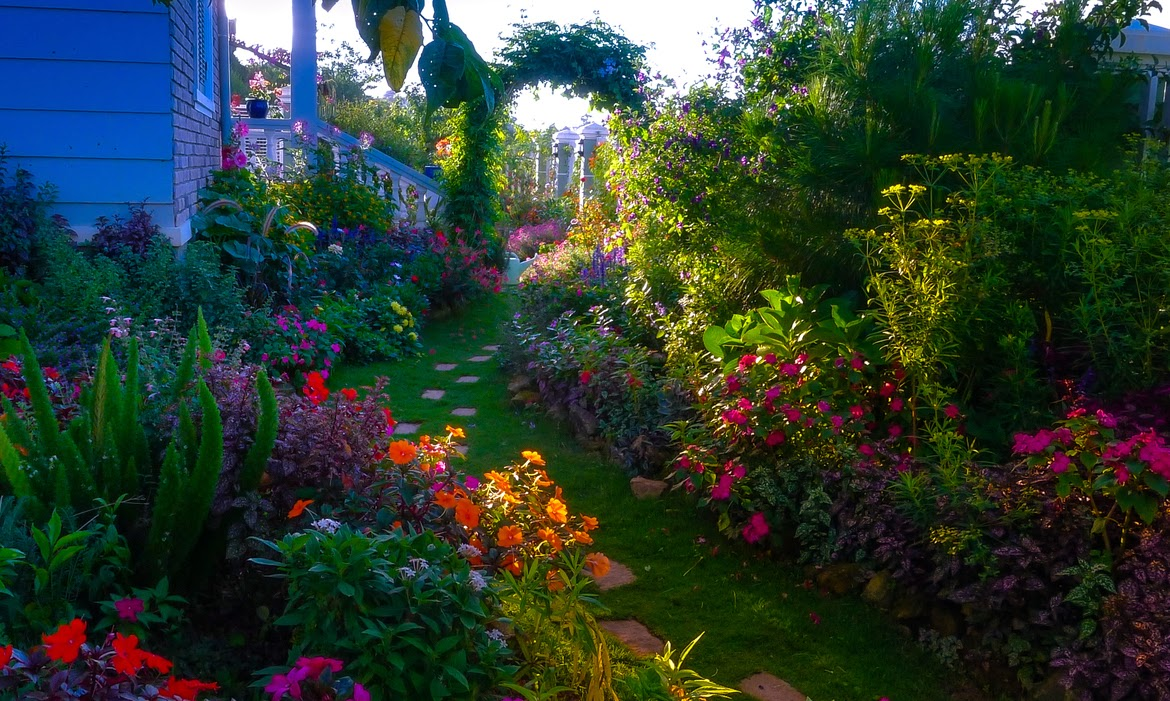 Jardin Con Miles De Flores De Colores Garden With Thousands Of