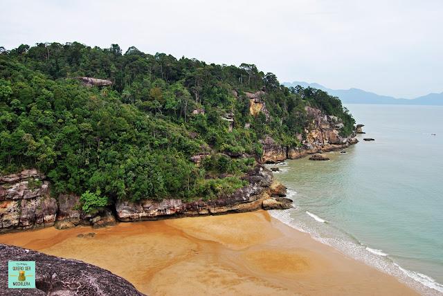 Padan Kecil en Parque Nacional de Bako (Borneo, Malasia)