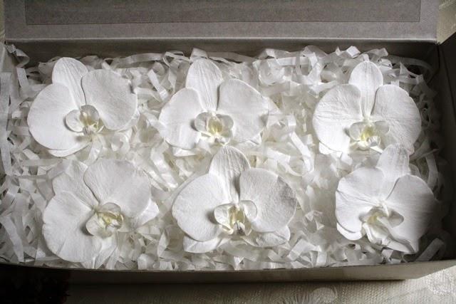 プリザーブドフラワーの胡蝶蘭