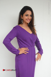 Actress Rakul Preet Singh Latest Stills in Beautiful Long Dress  0013.JPG