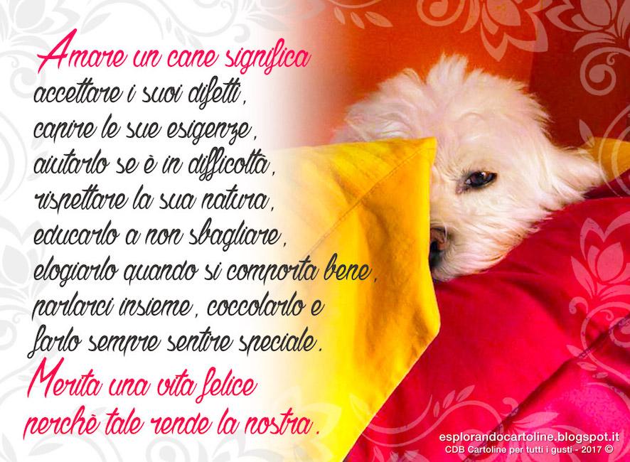 Cdb Cartoline Per Tutti I Gusti Cartolina Amare Un Cane Significa
