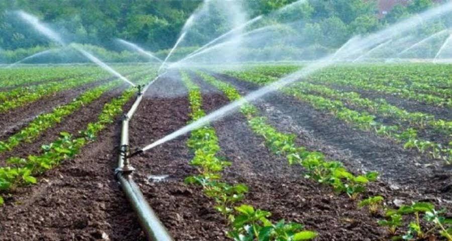 Υποβολή ενδικοφανών προσφυγών της Δράσης 10.1.04 «Μείωση της ρύπανσης νερού από γεωργική δραστηριότητα»