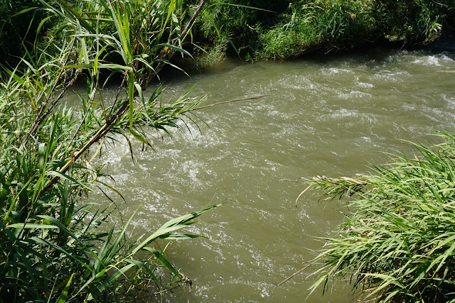 זרימת נהר הירדן