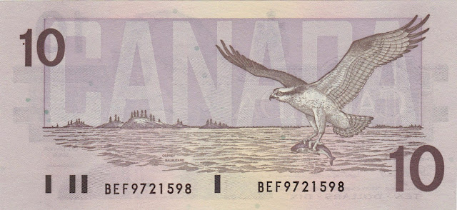 Canada money currency 10 Dollars banknote 1989 Birds, Osprey in flight with fish