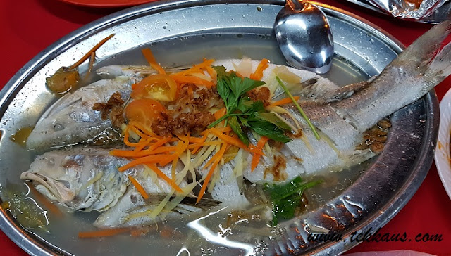 Steamed Fish Seafood Dinner
