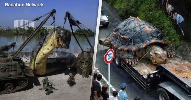 animales grandes experimento gigantes hombres